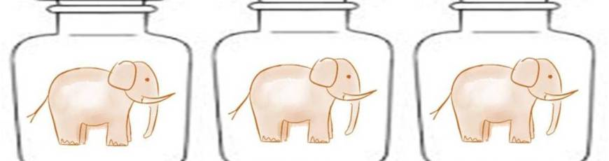 Un elefant in borcan…