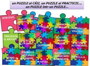 Un puzzle al practicii...