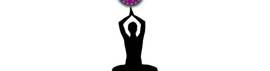 Yoga-LiLA